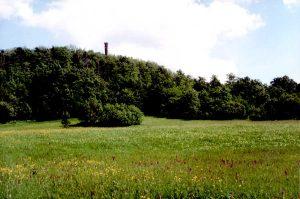 Naturschutzgebiet Geisingberg