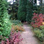 Herbstfärbung im Nordamerika-Quartier