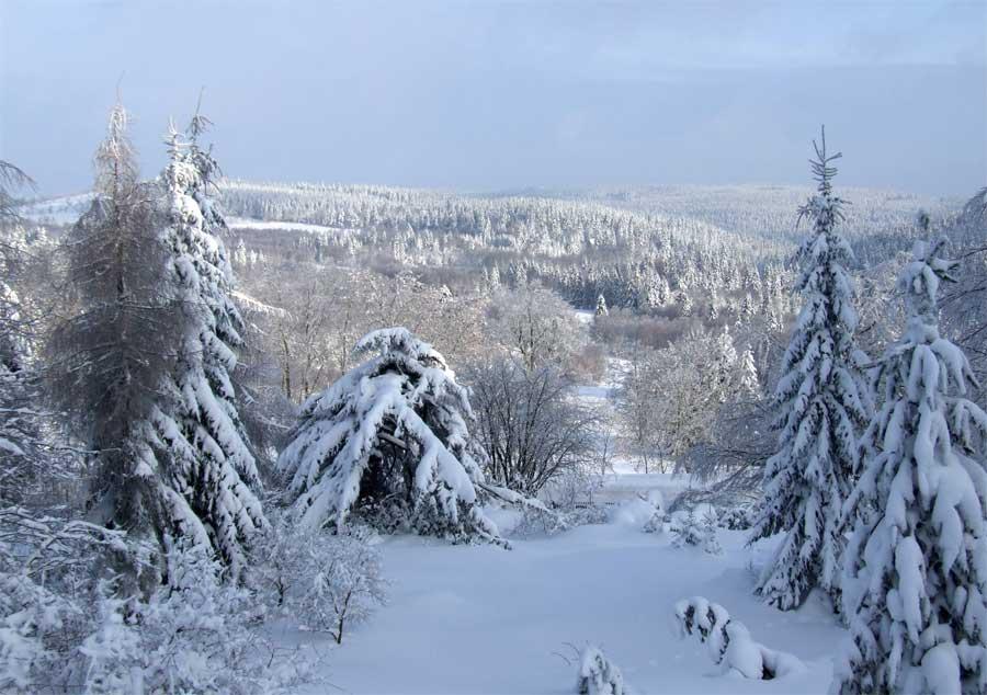 Winter im Osterzgebirge